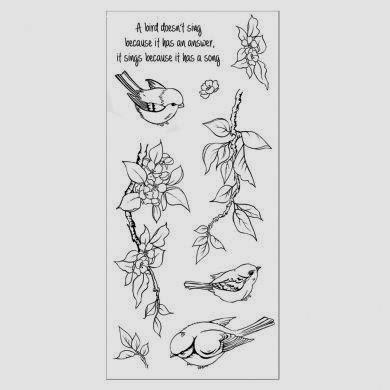 Birdsong_Web